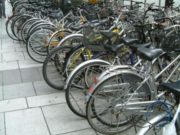 Bicycles Lined Up in a Row